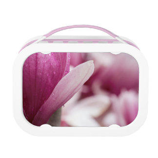 Magnolia Dew Drop Lunch Box