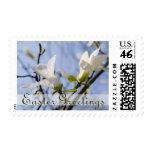 Magnolia • Easter Stamp