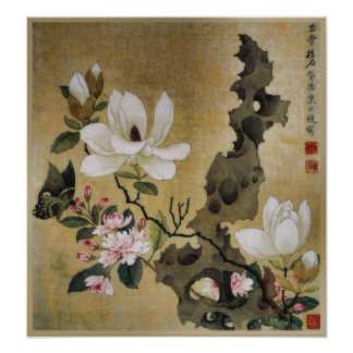 Magnolia Flower and Butterfly Ming Dynasty Poster