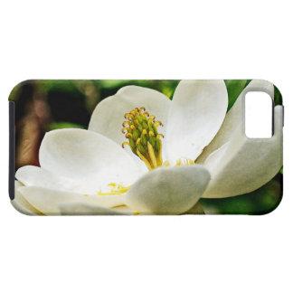 Magnolia Flower Close Up iPhone SE/5/5s Case