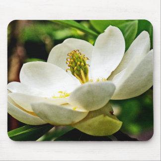 Magnolia Flower Close Up Mouse Pad
