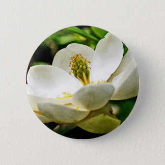 Magnolia Flower Close Up Pinback Button