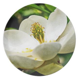 Magnolia Flower Close Up Plate