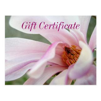 Magnolia Flower Gift Certificate Postcard