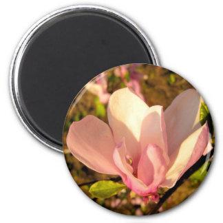 Magnolia Flower Magnet