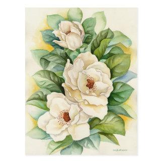Magnolia Flower Watercolor Art - Multi Postcard
