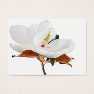 Magnolia Flower White Magnolias Floral Blossom Business Card