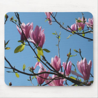 magnolia flowers and blue sky mouse pad