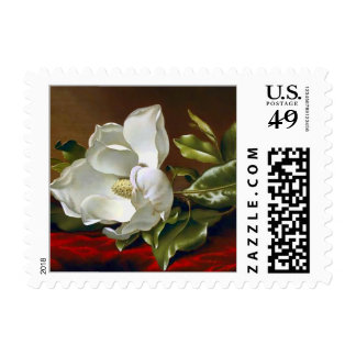 Magnolia Grandiflora Fine Art Postage