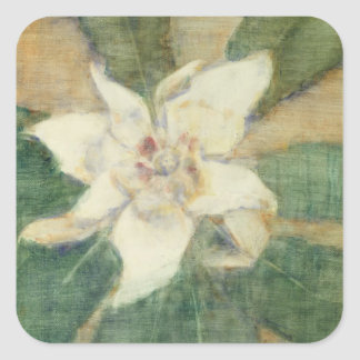 Magnolia Grandiflora Square Sticker