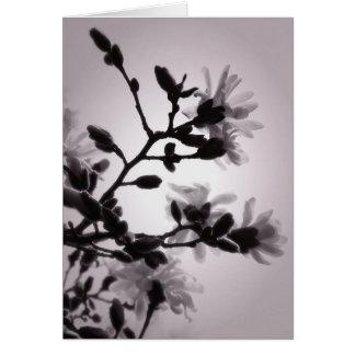 Magnolia inspirada asiática tarjeta pequeña