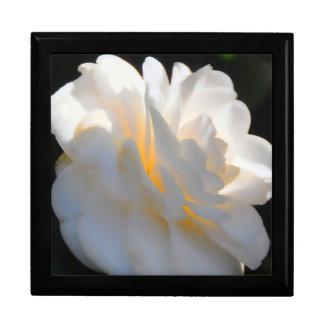 Magnolia Light Keepsake Boxes