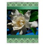 Magnolia-Light Green Design Greeting Card-Large Card