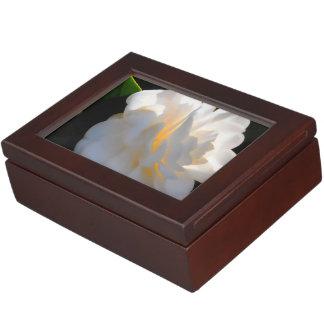 Magnolia Light Keepsake Box