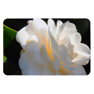 Magnolia Light Rectangular Magnets