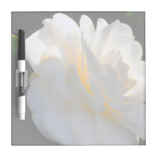 Magnolia Light Square Dry Erase Board