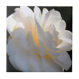 Magnolia Light Ceramic Tile