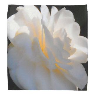 Magnolia Light Kerchiefs