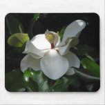 Magnolia meridional alfombrilla de raton