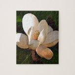 Magnolia meridional de Luisiana Rompecabeza Con Fotos