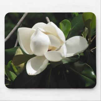 Magnolia meridional tapete de ratones