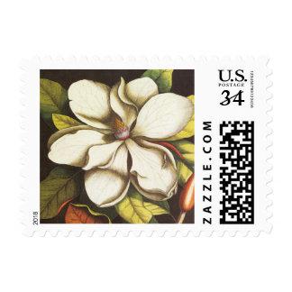 magnolia moderna del vintage estampilla