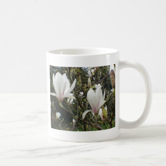 Magnolia Mugs