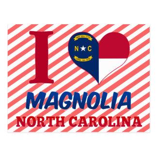 Magnolia, North Carolina Postcard