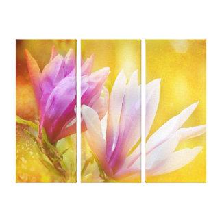 Magnolia Petals Stretched Canvas Prints