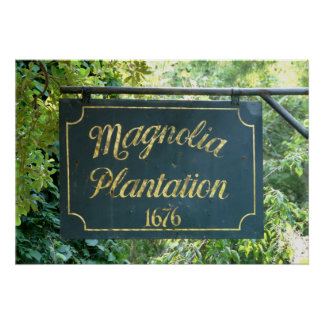 Magnolia Plantation Charleston South Carolina Poster