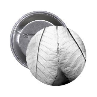 Magnolia Revolution Button
