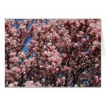 Magnolia rosada felicitación