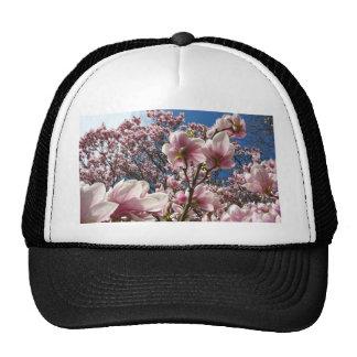 Magnolia salvaje (primavera, rosa, Tulpenbaum) Gorro