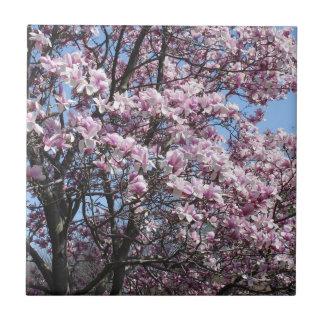 Magnolia Sky Ceramic Tile