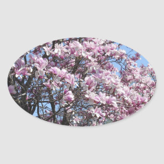 Magnolia Sky Oval Sticker