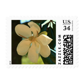 Magnolia Southern (Mississippi and Louisiana) Postage