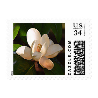 Magnolia Southern (Mississippi) Postage