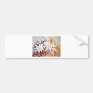 Magnolia Stellata Bumper Sticker