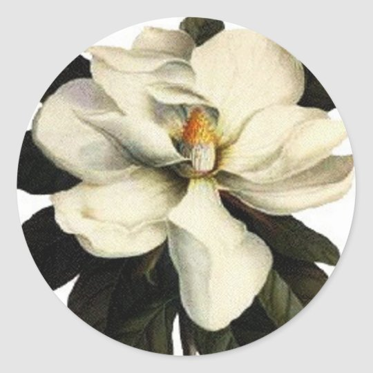 Magnolia - Sticker