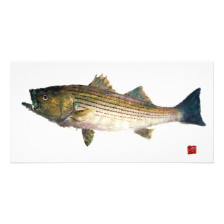 Magnolia Striped Bass Customized Photo Card