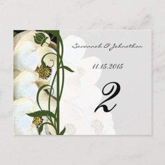 Magnolia Table Number Cards postcard