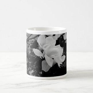 Magnolia Tazas De Café