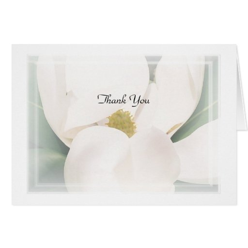 """Magnolia """"Thank You"""" Note Cards"""