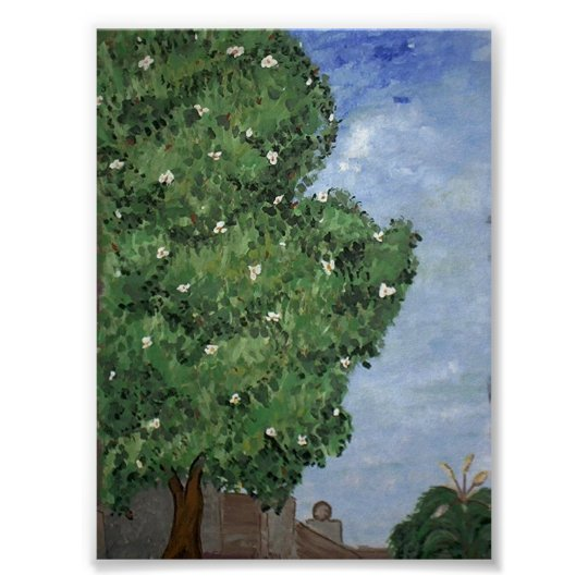 Magnolia Tree At City Park Poster