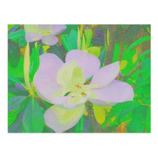Magnolias de Botannical de la postal
