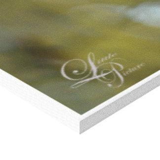 Magnolias de Salem Impresión En Lienzo Estirada