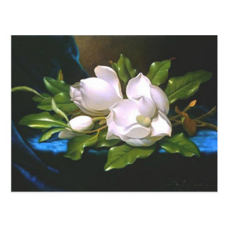 Magnolias en el terciopelo azul - postal