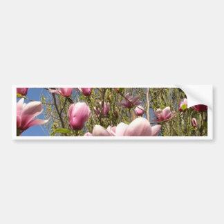Magnolias en la floración pegatina para auto
