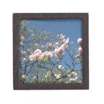 Magnolias en Oxford Caja De Joyas De Calidad