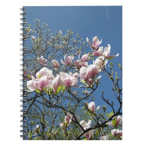 Magnolias en Oxford Libretas